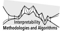 INTERPRETABILITY: METHODOLOGIES AND ALGORITHMS (IMA2019)